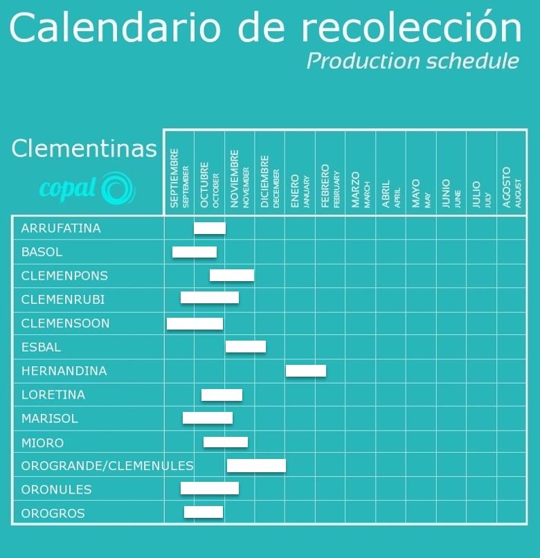 calendario clementinas COPAL