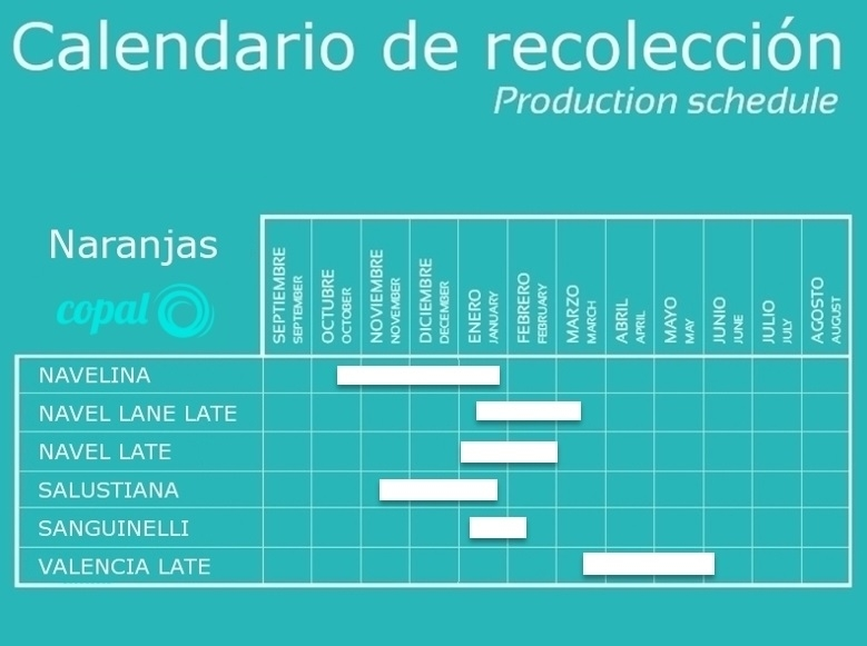 calendario naranjas COPAL